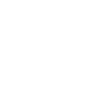 Icon Tip
